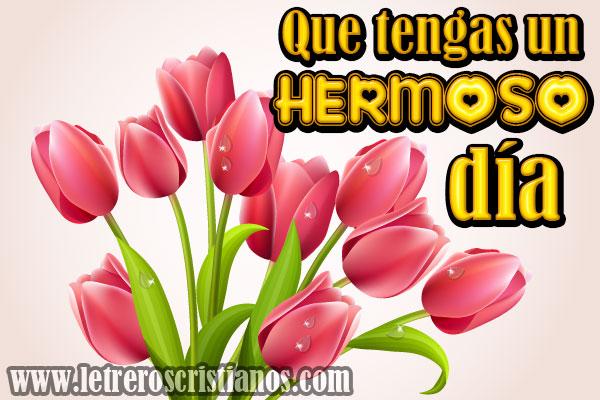 Imagenes De Flores Letreros Cristianos Com Imagenes Cristianas