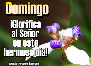 Glorifica-al-Senor