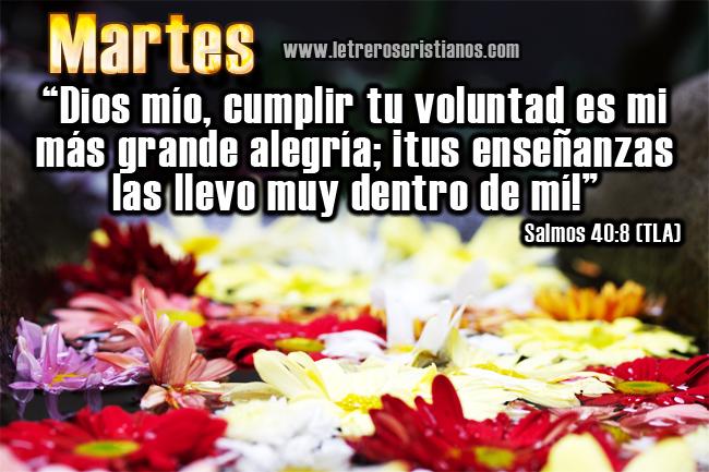 Martes-Salmos-40-8-TLA