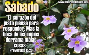Sabado-Provebios-15-28