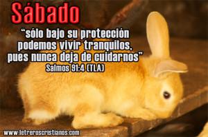 Sabado-Salmos-91-4