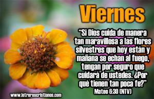 Viernes-Mateo-6-30