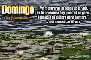 Domingo-Salmos-16-11