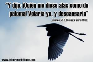 Domingo-Salmos-55-6