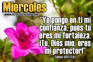 Miercoles-Salmos-59-9-TLA