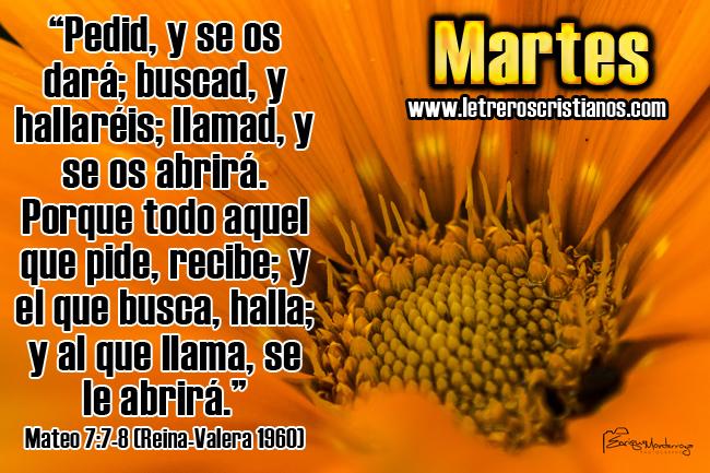 Martes-Mateo-7-7-8