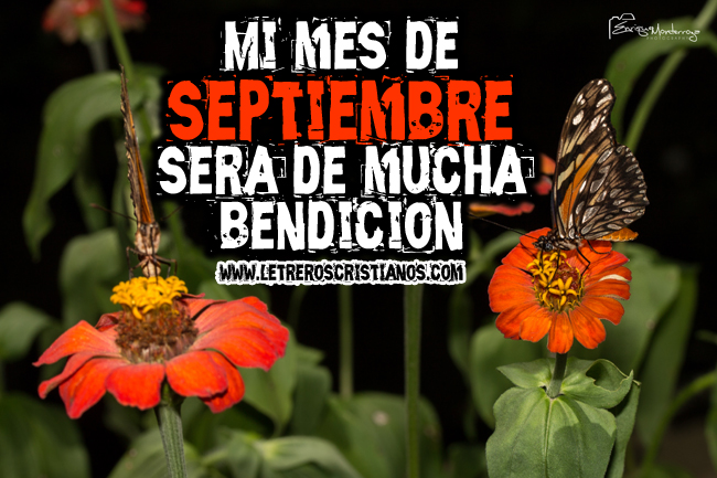 Imagenes Luzdary Mes De Septiembre | Consejos De Fotografía