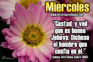 Miercoles-Salmos-34-8