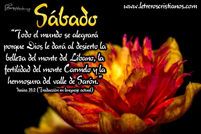 Sabado-Isaias-35