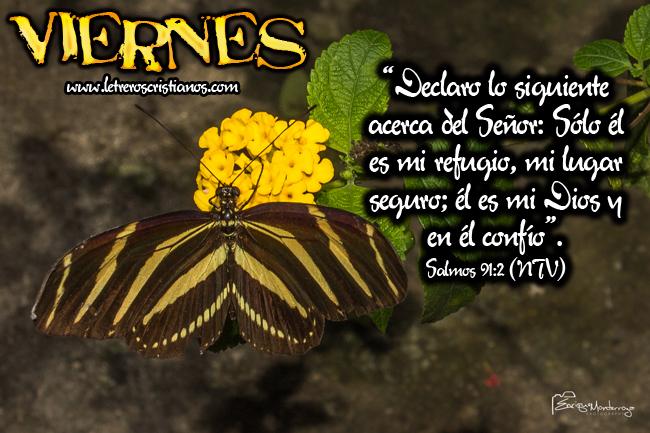 Viernes-Salmos-91-2