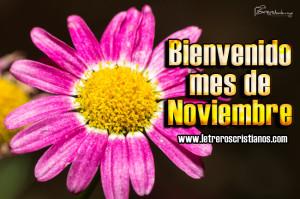 Bienvenido-mes-de-Noviembre