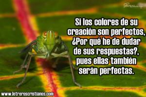 Los-colores-de-su-creacion