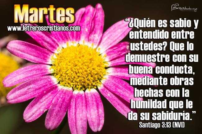 Martes-Santiago-3-13