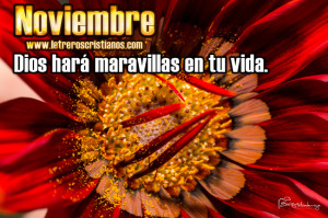 Noviembre-Dios-hara-maravillas