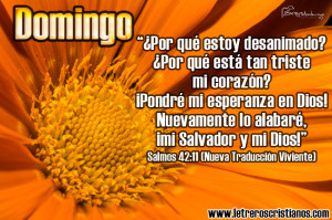 Domingo-Salmos-42-11-NTV