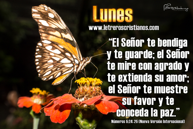 Lunes-Numeros-6-24-26-(Nueva-Version-Internacional)