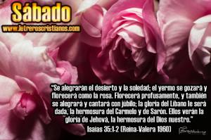 Sabado-Isaias-35-1-2