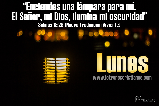 Lunes-Salmos-18-28