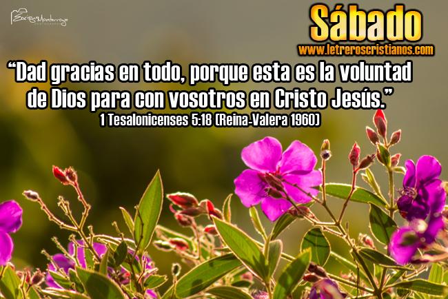 Sabado-1-Tesalonicenses-5-18