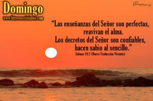 Domingo-Salmos-19-7-NTV