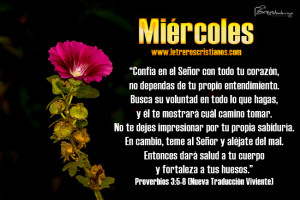 Miercoles-Proverbios-3-4-8-NTV
