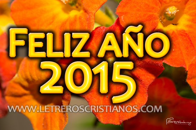 Feliz-año-2015